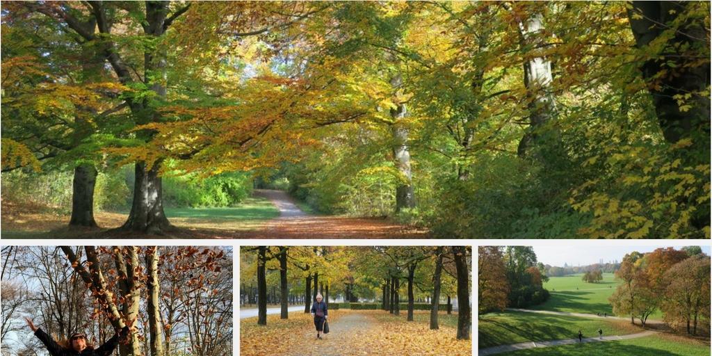 Outono em Munique, no Jardim Inglês, um dos maiores parques urbanos do mundo
